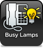 Busy Lamps (BL) is for use with extensions on our PBX and means that - if you have a phone that supports it