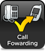 Call Forwarding & Divert