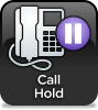 Call Hold